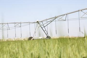وزارة الزراعة تبحث استخدام منظومات الري الحديثة في ري وتسميد محصول الحنطة في الأنبار